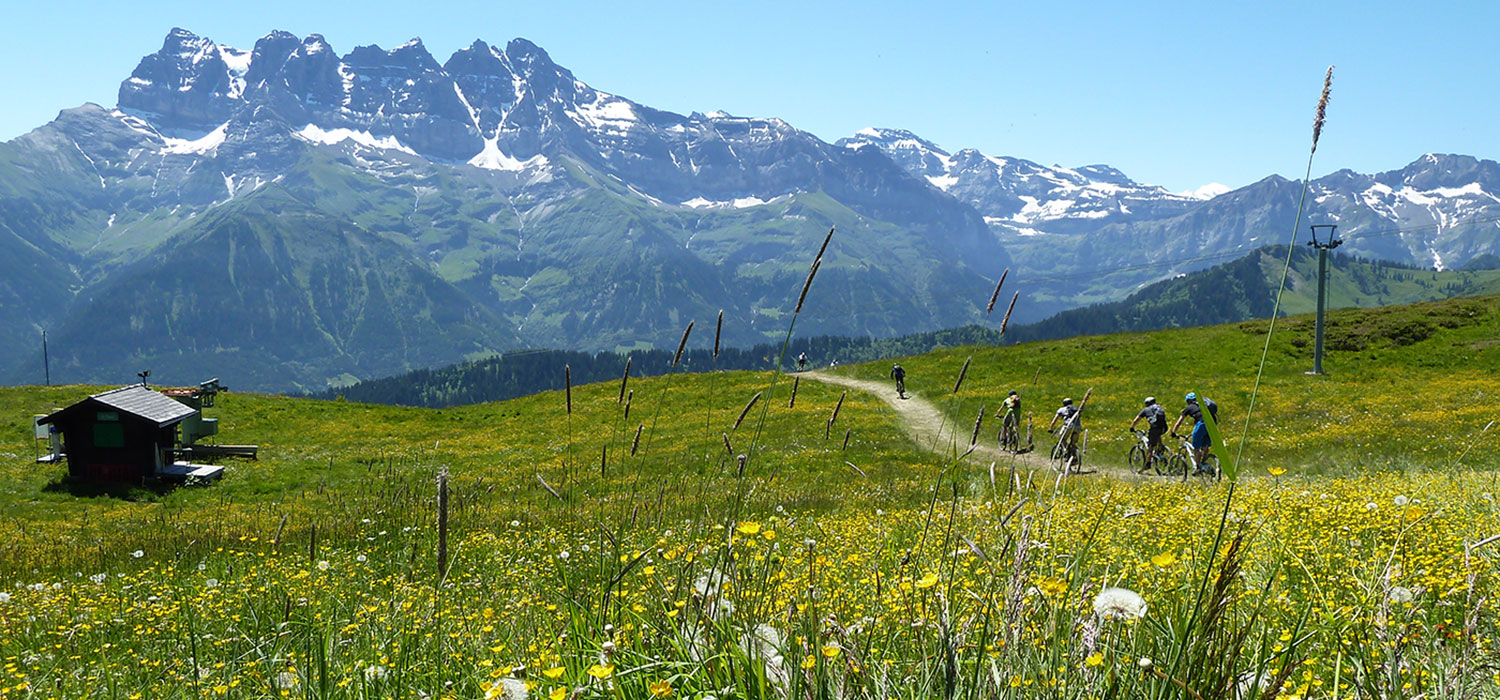 Summer MTB Holidays in Morzine – More Mountain