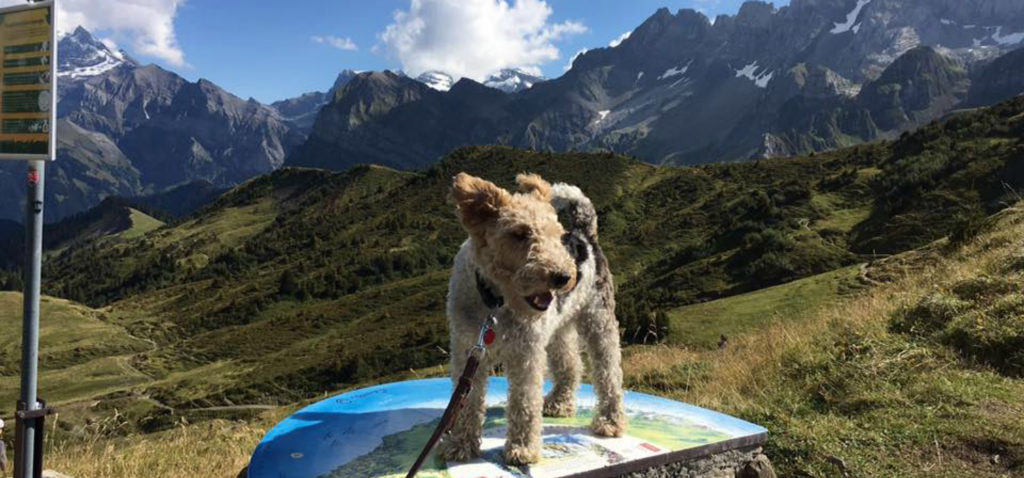 hikes from morzine