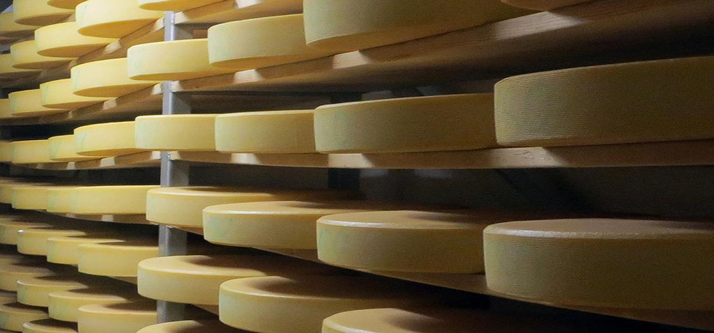 How to Have a Flatter Tummy: Science Says Eat More Cheese
